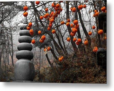 Autumn In Mountains Metal Print
