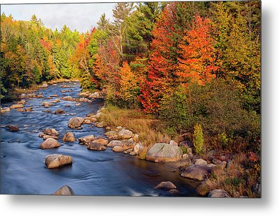 Autumn In New Hampshire Metal Print by Betty Denise