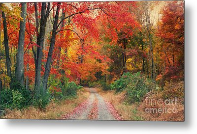 Autumn In New Jersey Metal Print