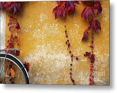 Metal Print featuring the photograph Autumn In Red by Yuri Santin