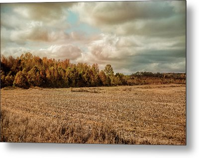 Autumn In The Country Landscape Scene Metal Print