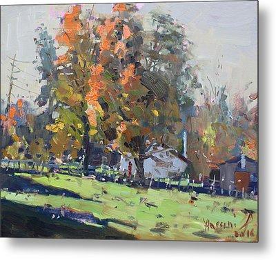 Autumn In The Farm Metal Print by Ylli Haruni