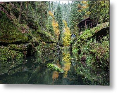 Autumn In The Kamnitz Gorge Metal Print