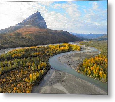 Autumn In The Koyukuk River Valley Metal Print by Adam Owen