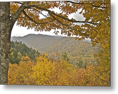 Autumn In The Smokies Metal Print by Michael Peychich