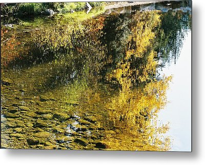 Autumn In The Water Metal Print