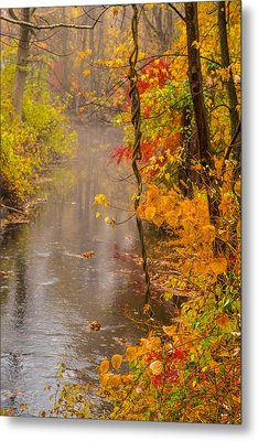 Autumn In Trumbull Metal Print by Karol Livote