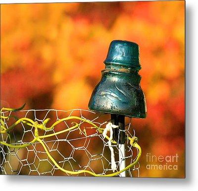 Autumn Insulator Metal Print