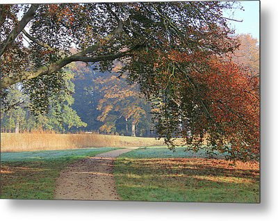 Autumn Landscape With Colored Trees In Park, Netherlands Metal Print