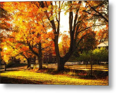 Metal Print featuring the photograph Autumn Lane by Robert Clifford