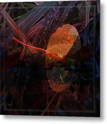 Autumn Leaf Metal Print by Stuart Turnbull