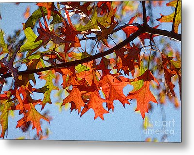 Autumn Leaves 16 Metal Print by Jean Bernard Roussilhe