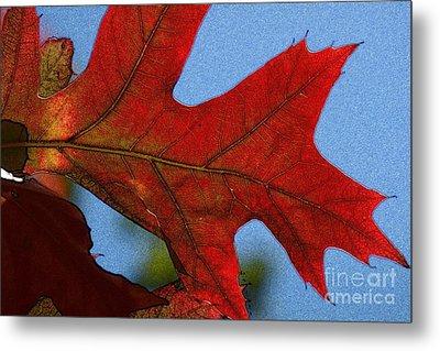 Autumn Leaves 18 Metal Print by Jean Bernard Roussilhe