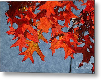 Autumn Leaves 19 Metal Print by Jean Bernard Roussilhe