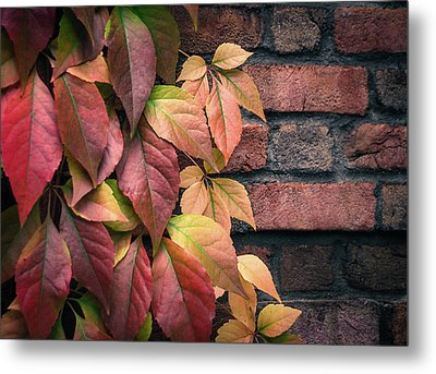 Autumn Leaves Against Brick Wall Metal Print by Julie Palencia