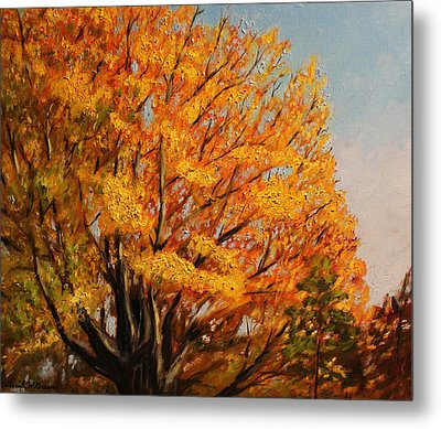 Autumn Leaves At High Cliff Metal Print by Daniel W Green
