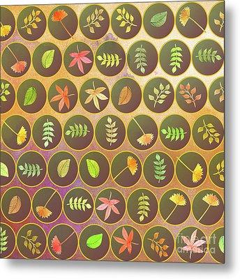 Autumn Leaves Metal Print by Gaspar Avila