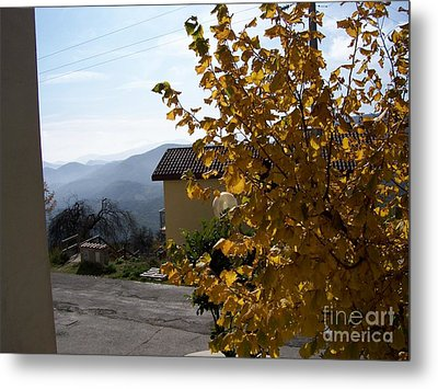 Autumn Leaves Metal Print by Judy Kirouac
