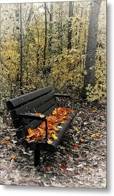 Metal Print featuring the photograph Autumn Leaves On A Bench by Dan Carmichael