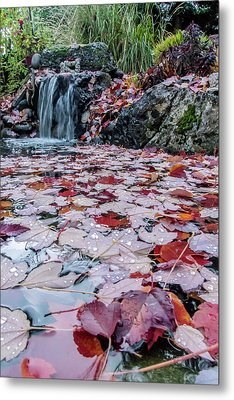 Autumn Leaves On The Pond Metal Print by Mick Anderson