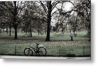 Autumn Life Metal Print by Glenn DiPaola