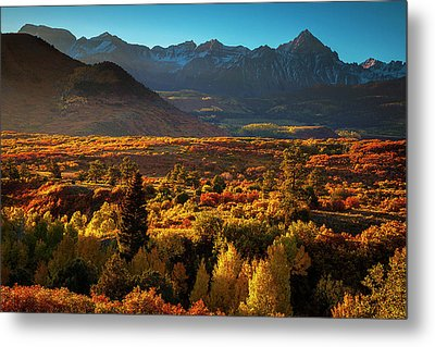Metal Print featuring the photograph Autumn Light by Andrew Soundarajan