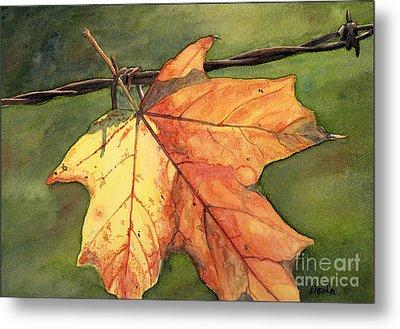 Autumn Maple Leaf Metal Print by Antony Galbraith
