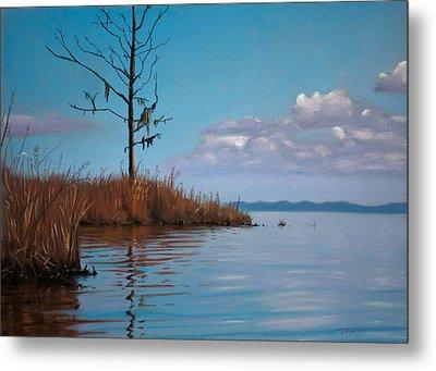 Autumn Marsh Reeds Metal Print