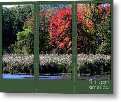 Metal Print featuring the photograph Autumn Marsh Through A Window by Smilin Eyes  Treasures