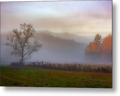 Autumn Mist Metal Print by Rick Berk