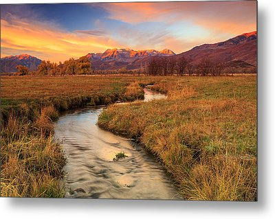 Autumn Morning In Heber Valley. Metal Print