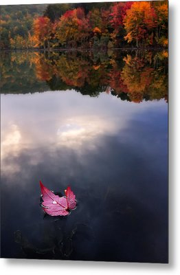 Autumn Mornings Iv Metal Print by Craig Szymanski