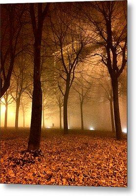 Autumn Metal Print by Niki Mastromonaco