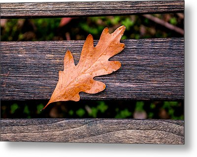Autumn Oakleaf On Bench Metal Print by Tom Mc Nemar