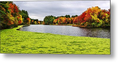 Autumn On Grist Mill Pond In Sudbury Metal Print by Luke Moore