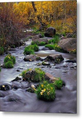 Autumn On Mill Creek Metal Print