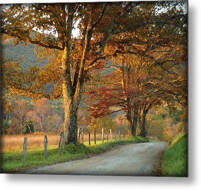 Autumn On Sparks Lane Metal Print