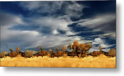 Autumn On The Edge Of The Great Plains  Metal Print by David Dehner