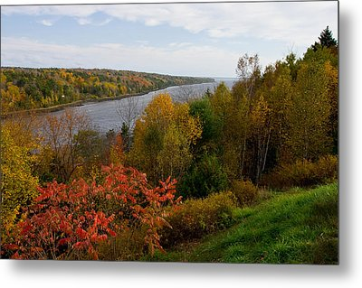 Autumn On The Penobscot Metal Print by Brent L Ander