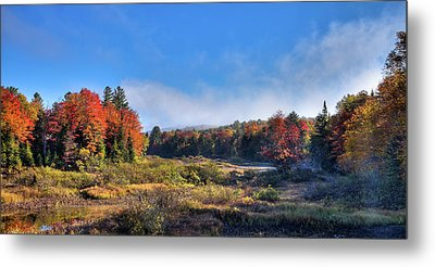 Metal Print featuring the photograph Autumn Panorama At The Green Bridge by David Patterson