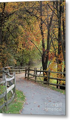 Autumn Path In Park In Maryland Metal Print by William Kuta