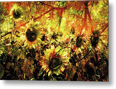 Autumn Metal Print by Paul Drewry