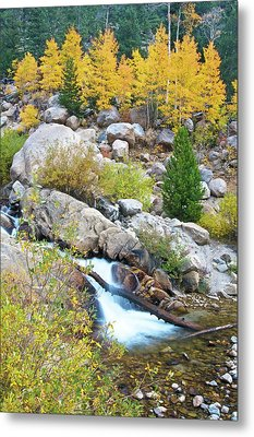 Metal Print featuring the photograph Autumn Peace by Gary Lengyel