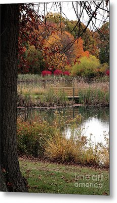 Autumn Pond In Maryland Metal Print
