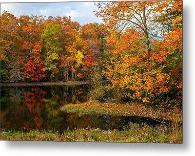 Autumn Pond Reflections Metal Print