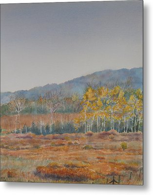 Autumn Poplars Metal Print by Debbie Homewood