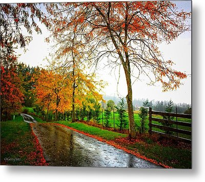 Autumn Rains Metal Print
