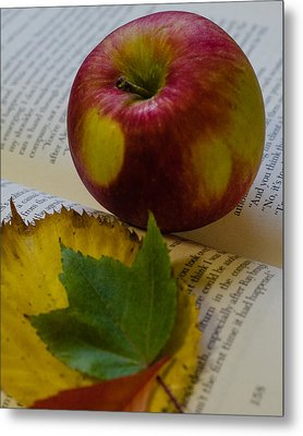 Autumn Reading Metal Print