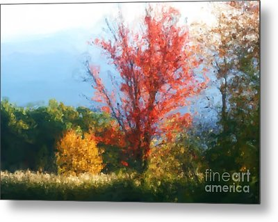 Metal Print featuring the mixed media Autumn Red And Yellow by Smilin Eyes  Treasures
