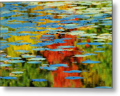 Metal Print featuring the photograph Autumn Lily Pads by Diana Angstadt